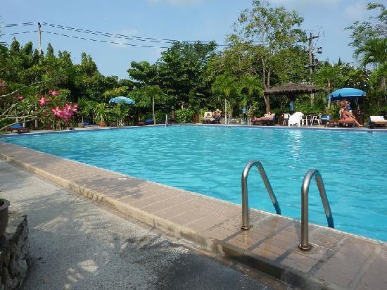 Palm Garden: Pool