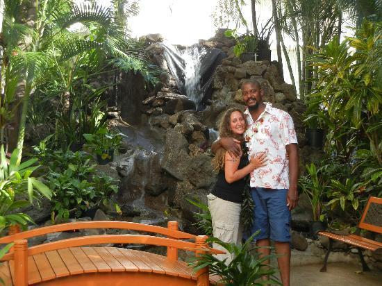 White Sands Hotel: Aloha!