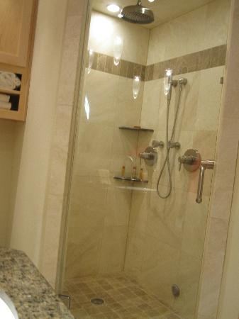 Inn on Lake Granbury: shower