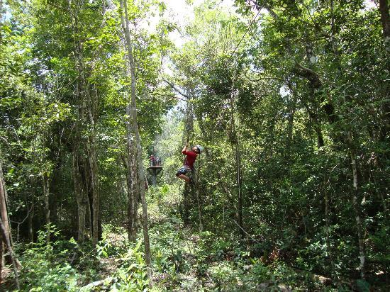 Selva Maya Eco Adventure: Zip Line