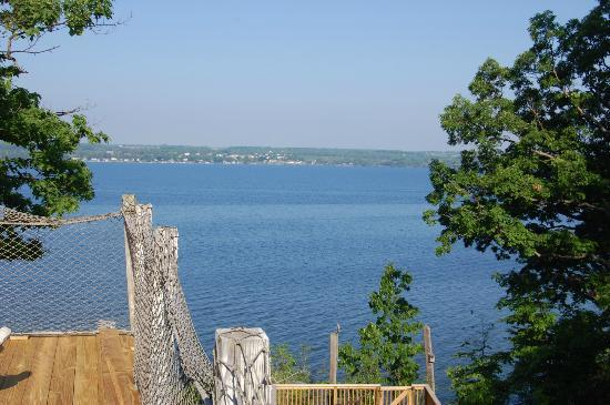 Paradise on the Lake Bed and Breakfast: View from the deck