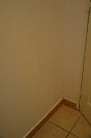Adagio Monaco Palais Josephine Aparthotel: toilet wall