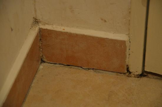 Adagio Monaco Palais Josephine Aparthotel: toilet wall detail