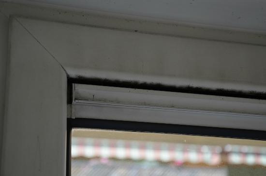 Adagio Monaco Palais Josephine Aparthotel: window air vent