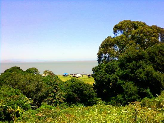 China Camp State Park: A view from the hill above the fishing village