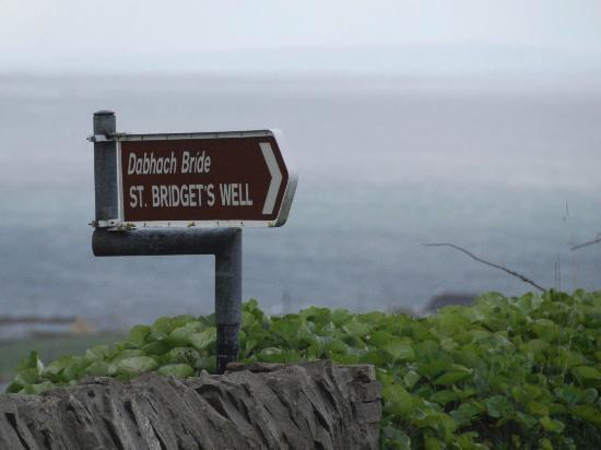 St. Brigid's Well: Only sign tell you where it is