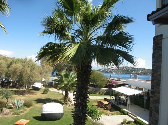 Cennet Park Hotel: garden