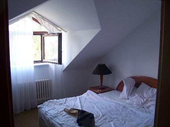 Hotel chotol horom ice recenze a srovn n cen for Domus henrici boutique hotel tripadvisor