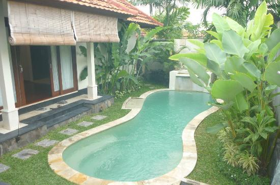 Bali Nyuh Gading Villa: Our very own private pool