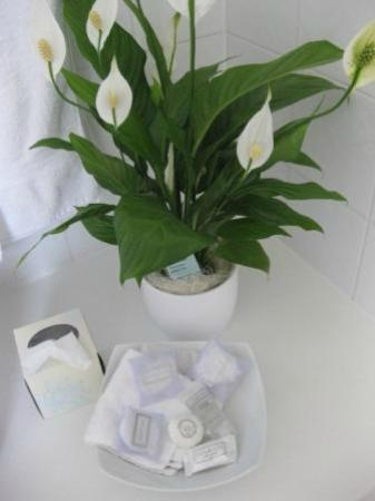 Buccleuch Guest House : Eye for detail in the bathroom