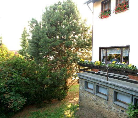 Müller's Hotel & Restaurant: Blick von der Terrasse