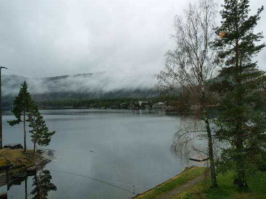 Byglandsfjord, Норвегия: View from room