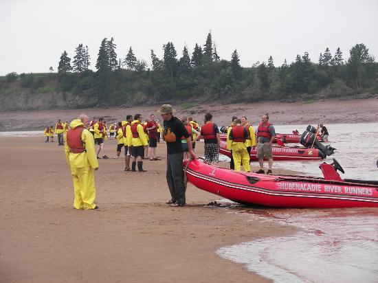 Shubenacadie River Runners: Playing on the huge sand bar, waiting for the tidal bore to roar!