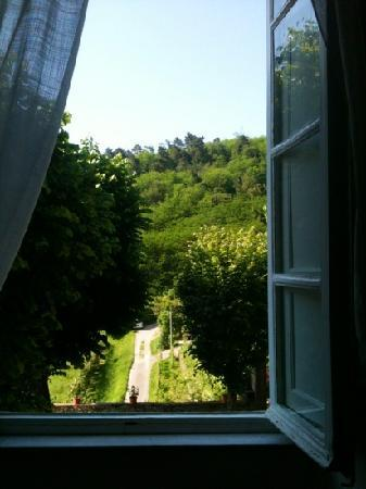 Arliano, Italy: Room with a view