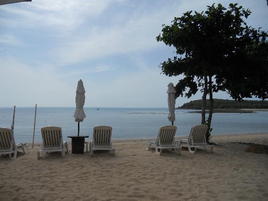 Nora Beach Resort and Spa: pool