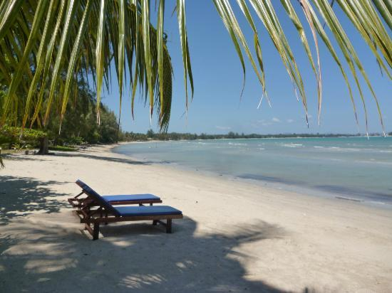 Viva Vacation Resort: the beach - looks nice but quite dirty and shallow