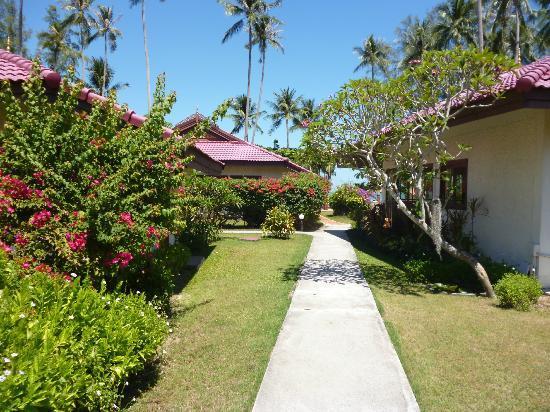 Viva Vacation Resort: villas in a wonderful garden