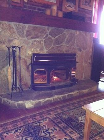 Silver Forest Inn: Cozy fire in the great room