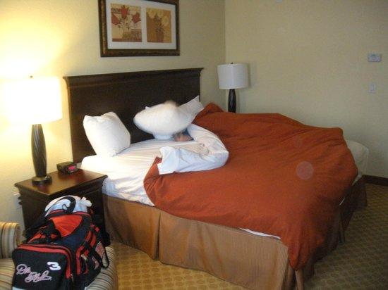 Country Inn & Suites by Radisson, Port Charlotte, FL: room, king