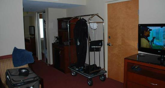Hilton Garden Inn Pittsburgh/Southpointe: Living room area