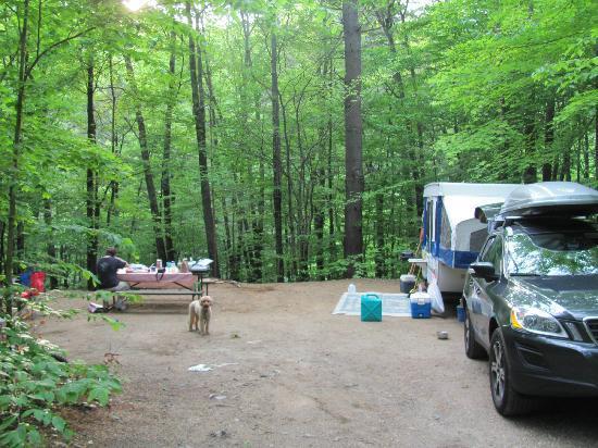 Jamaica State Park Campground: Site #30