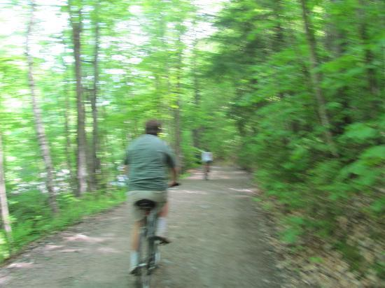 Jamaica State Park Campground: Bike Path to the Hampton Falls trail head