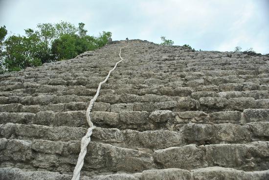 The Grand Mayan Riviera Maya: Coba ruins..we climbed 123 steps.whew!