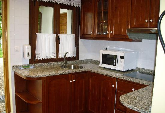 Apartamentos Villa la Argentina: Kitchen