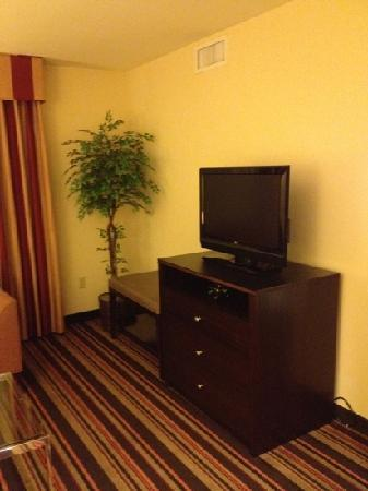 Homewood Suites by Hilton Carlsbad-North San Diego County: sitting area TV