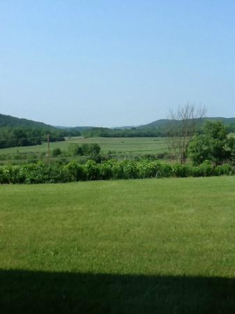 Huntingdon Motor Inn: View from our room
