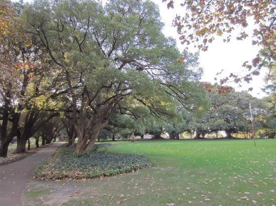 珀斯海德公园