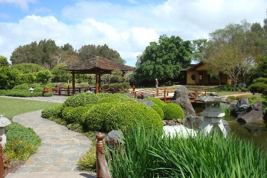 Japanese Gardens, East Gosford