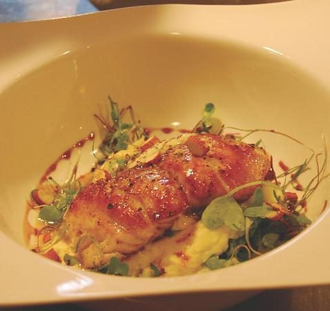 O'Farrell Restaurant : Catch of the day with truffle potato puree