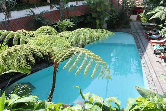 Hotel Tugu Malang : View from my room at 3rd floor