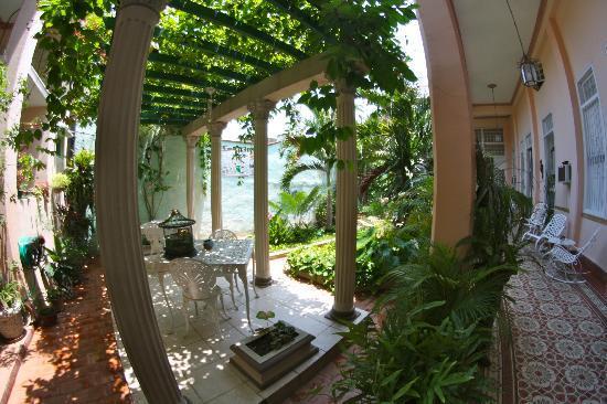 Hostal Autentica Pergola: the courtyard