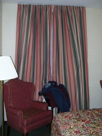 Best Western Plus Independence Park Hotel: Hotel Window and Chair