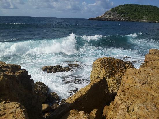 Half Moon Bay: the deep blue