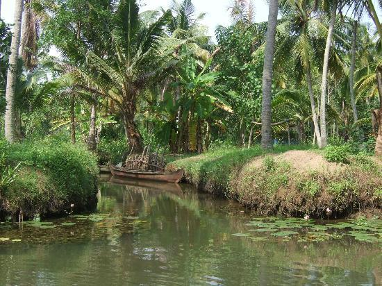 Sajhome: Backwaters