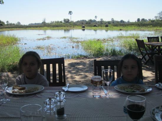 Wilderness Safaris Seba Camp : Dining room view - elephants and hippos!