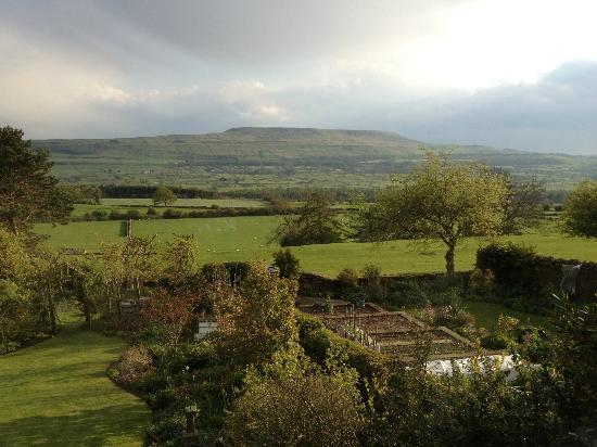 Hawthorn Cottage: view from the room