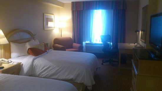 Hilton Garden Inn Orlando at SeaWorld: Room