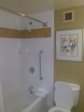 Hilton Garden Inn Orlando at SeaWorld: Bath/shower