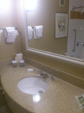 Hilton Garden Inn Orlando at SeaWorld: Wash basin