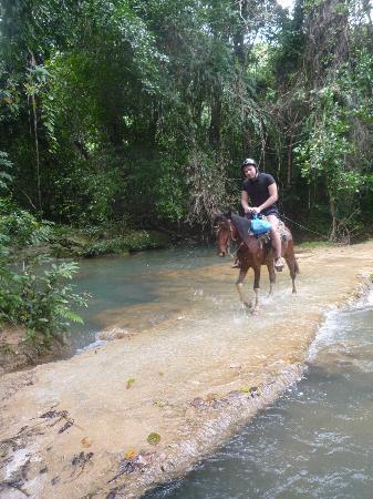 Chalet Tropical Village: .на лошадках к водопаду))