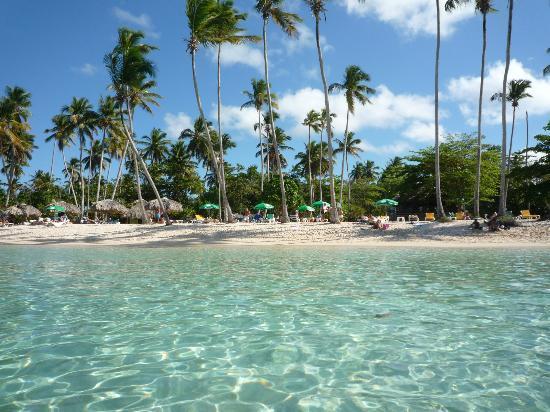 Chalet Tropical Village: наш пляж!!!!
