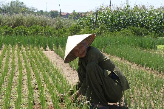 Hoi An, Vietnam: This is the lady who we watered with