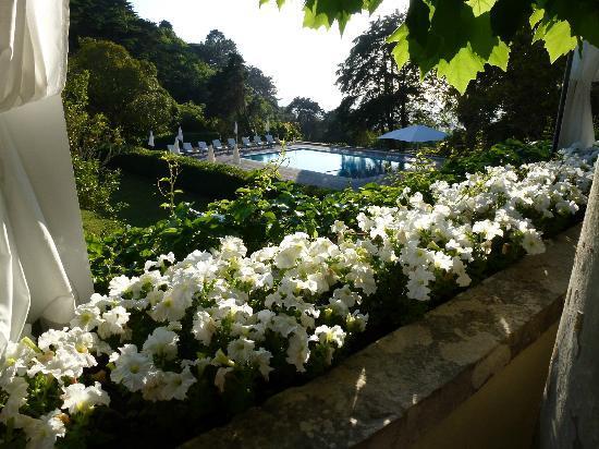 Tivoli Palacio de Seteais: Pool from Terraza
