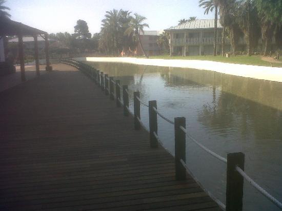 PortAventura Hotel Caribe: Puente