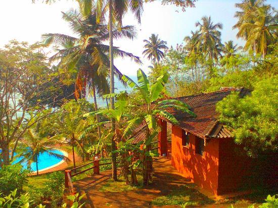 Eva Lanka Hotel: Наше шале