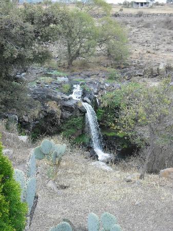 Rancho Las Cascadas Riding Tours : les cascade